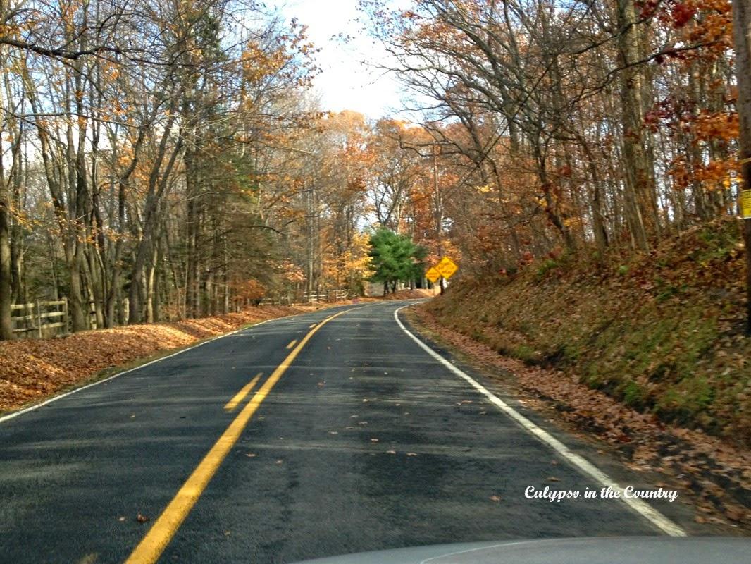 Country Road in Sergeantsville NJ