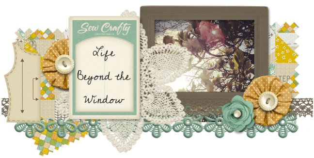 Life Beyond the Window
