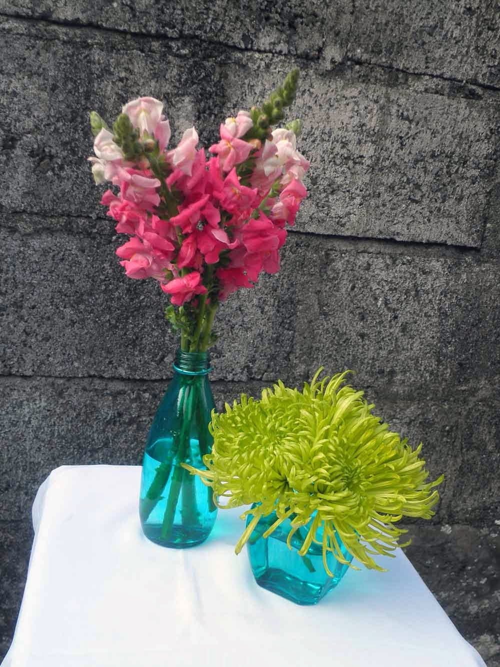 turquoise vase-pink snapdragon & green spider mums