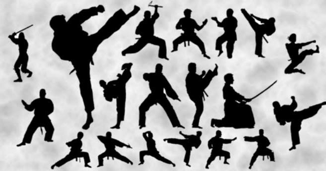 Cat gories et types de mouvements en arts martiaux the for Art martiaux