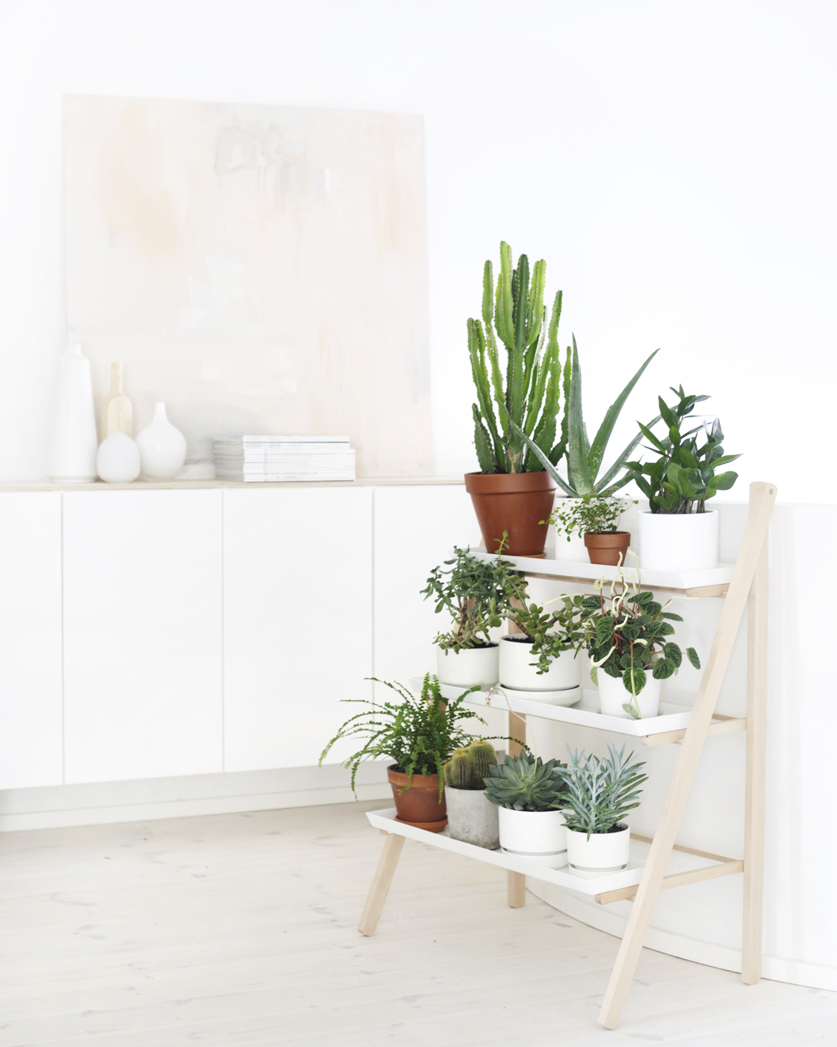 T d c interior styling indoor plants - Corner shelf for plants ...