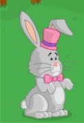 conejo de pascua esta en el gatuprque! conejito