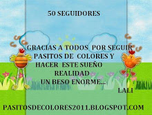  50 SEGUIDORES !!