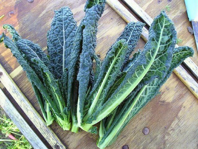 How About The Chinese Kale Revolution The Food Canon