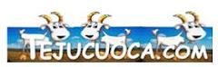Tejuçuoca.com