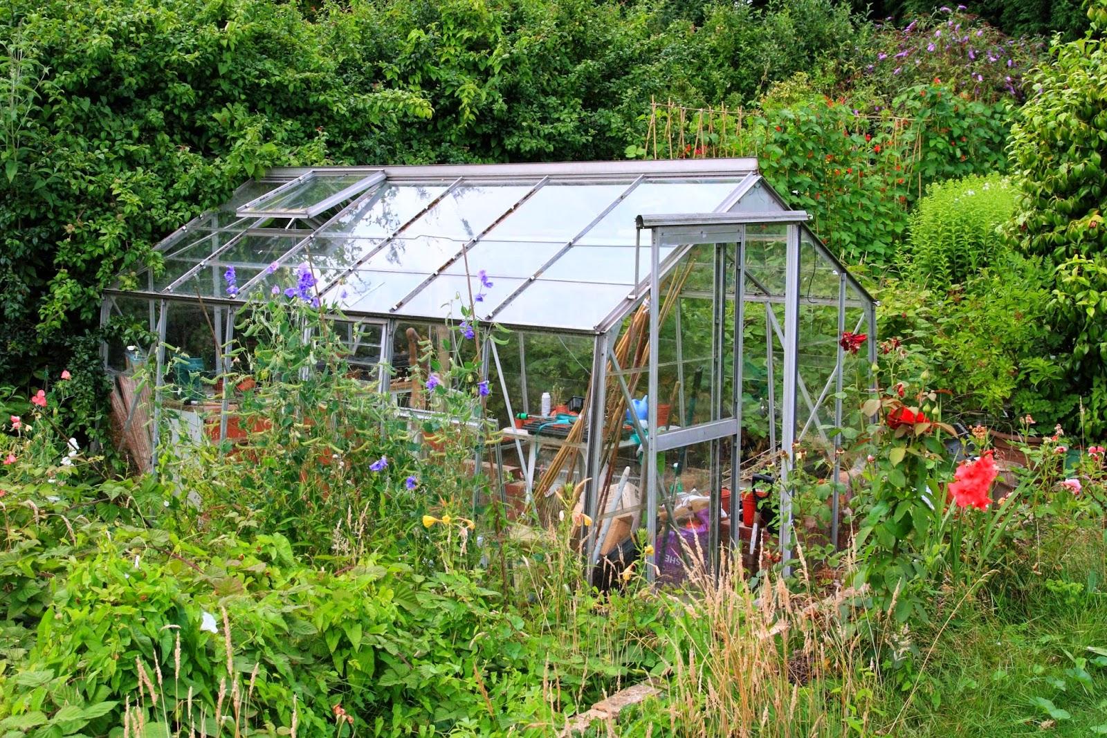 Come costruire una serra per l orto cool orto fai da te - Costruire una serra in casa ...