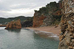 L'essència del mediterrani