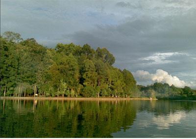 Situ Gede Objek Wisata Alam Murah Di Bogor