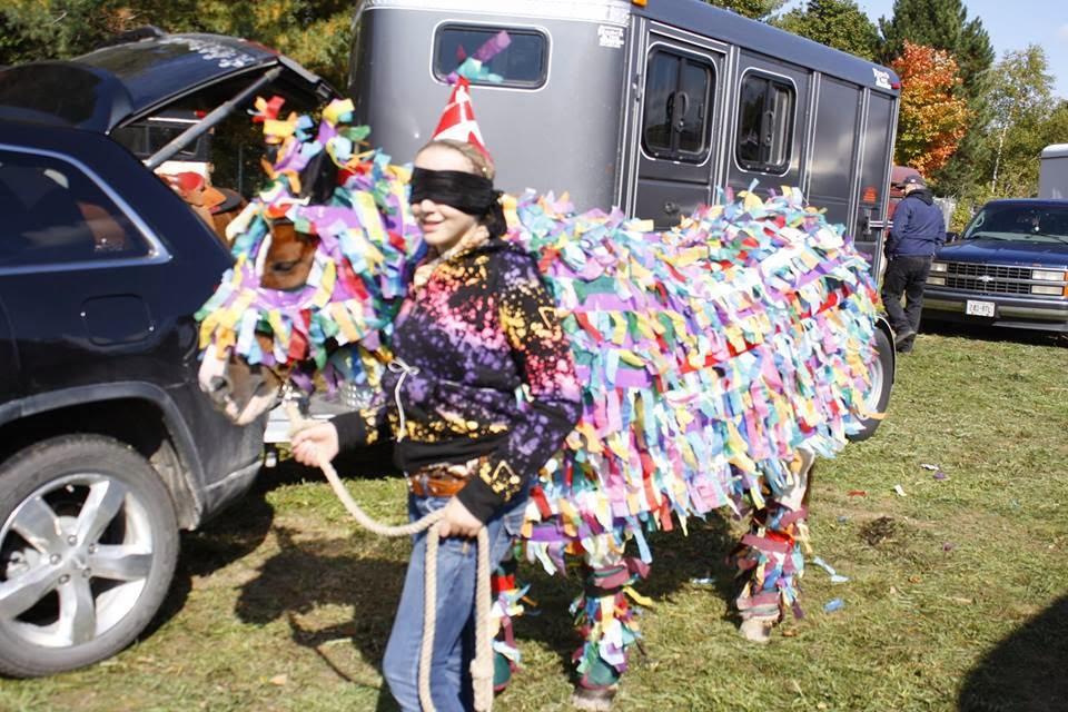 Pinata Horse Costume a Pinata Horse