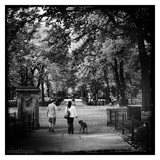 Couple walking with their dog in Central Park, New York City