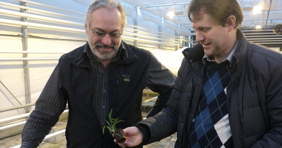 cfaa 47  6 apprentis agricoles en flandre du 18  02 au 10  03  2012  au royaume de la culture in