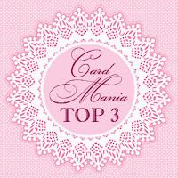 CMC#13