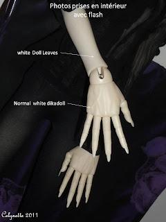 Mains aux doigts articulés - Page 6 Diapositive6