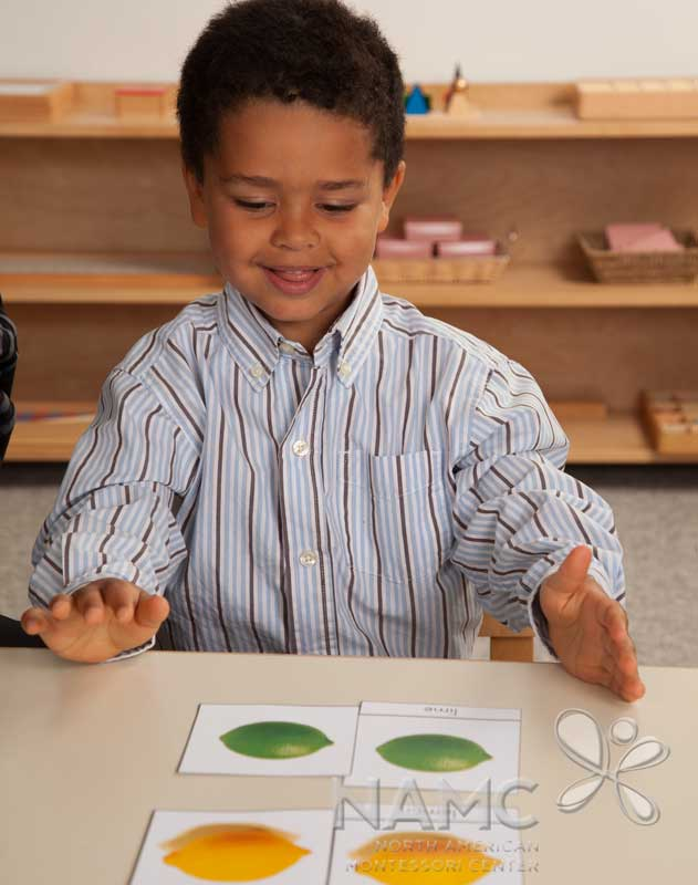 montessori about freedom and discipline An online montessori resource tool for teachers and parents  she needs freedom to move and a view of the environment leading to self-discipline.