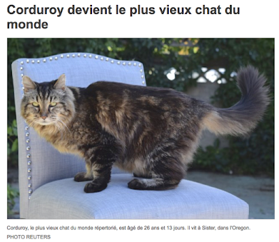 http://www.lapresse.ca/actualites/insolite/201508/14/01-4892750-corduroy-devient-le-plus-vieux-chat-du-monde.php