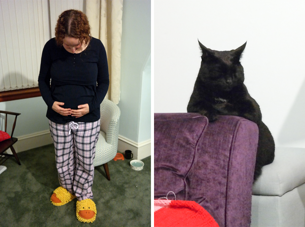 Baby bump, week twenty five / Gizmo, black cat, snoozing