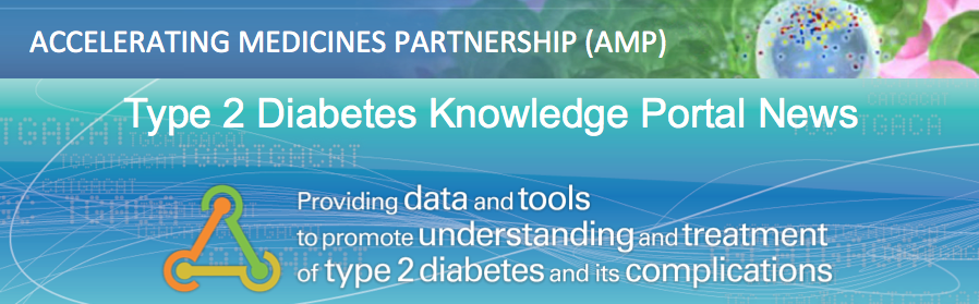 Type 2 Diabetes Knowledge Portal News