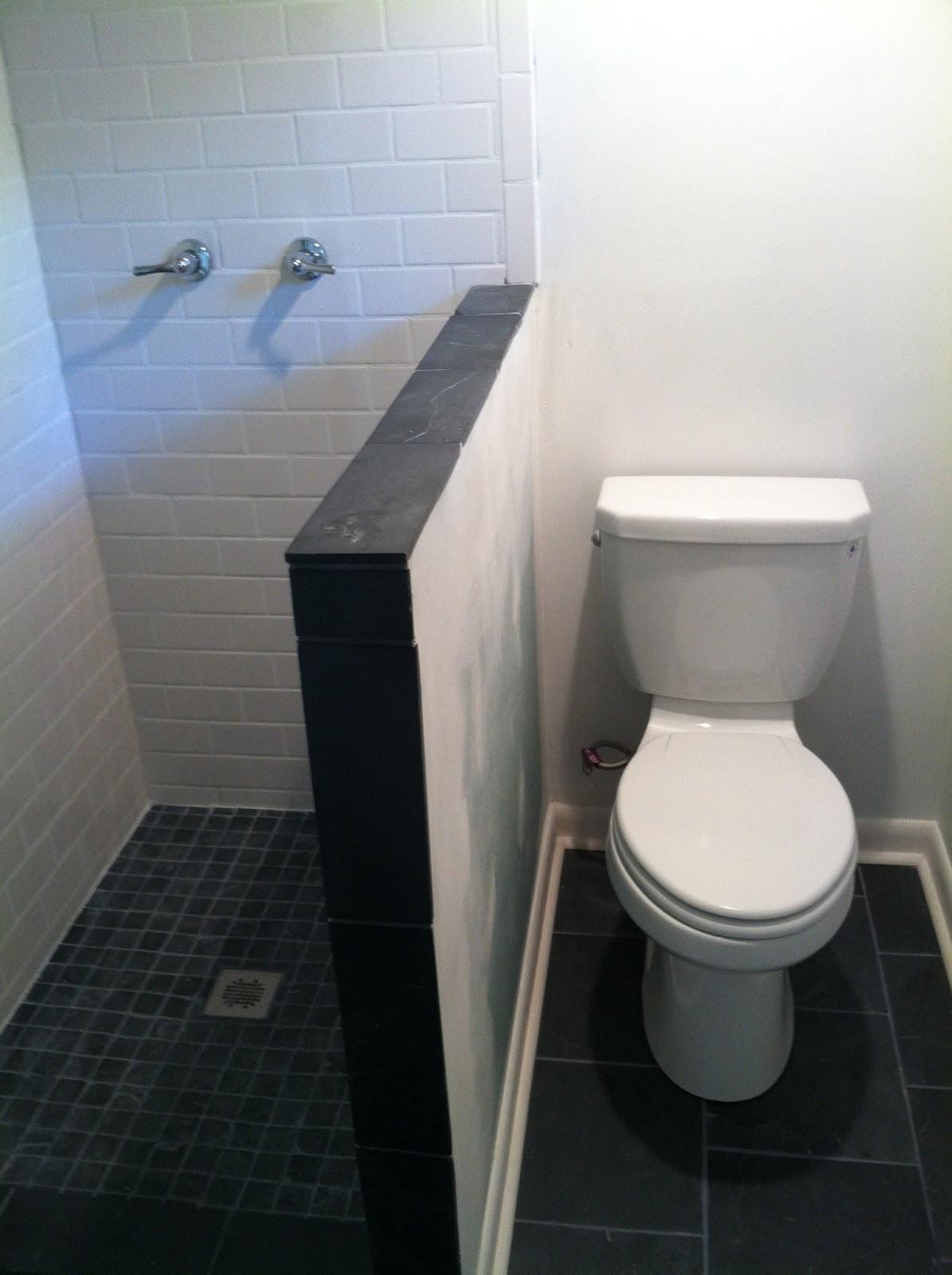Me Ed And Pea Basement Bathroom Renovation