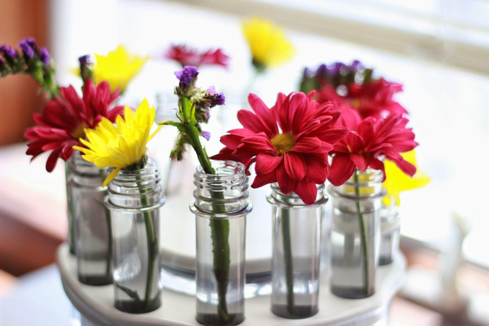 Diy test tube flower rack craftbnb dinas daystest tube flower vase reviewsmspy
