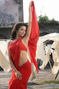 Surveen Chawla Hot Photos-thumbnail-3