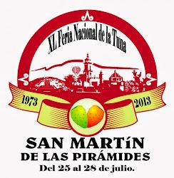 San Martín de las Pirámides 2013