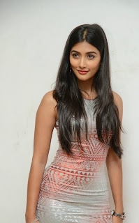 Pooja+Hegde+at+OLK+Success+Meet+Pictures4.jpg