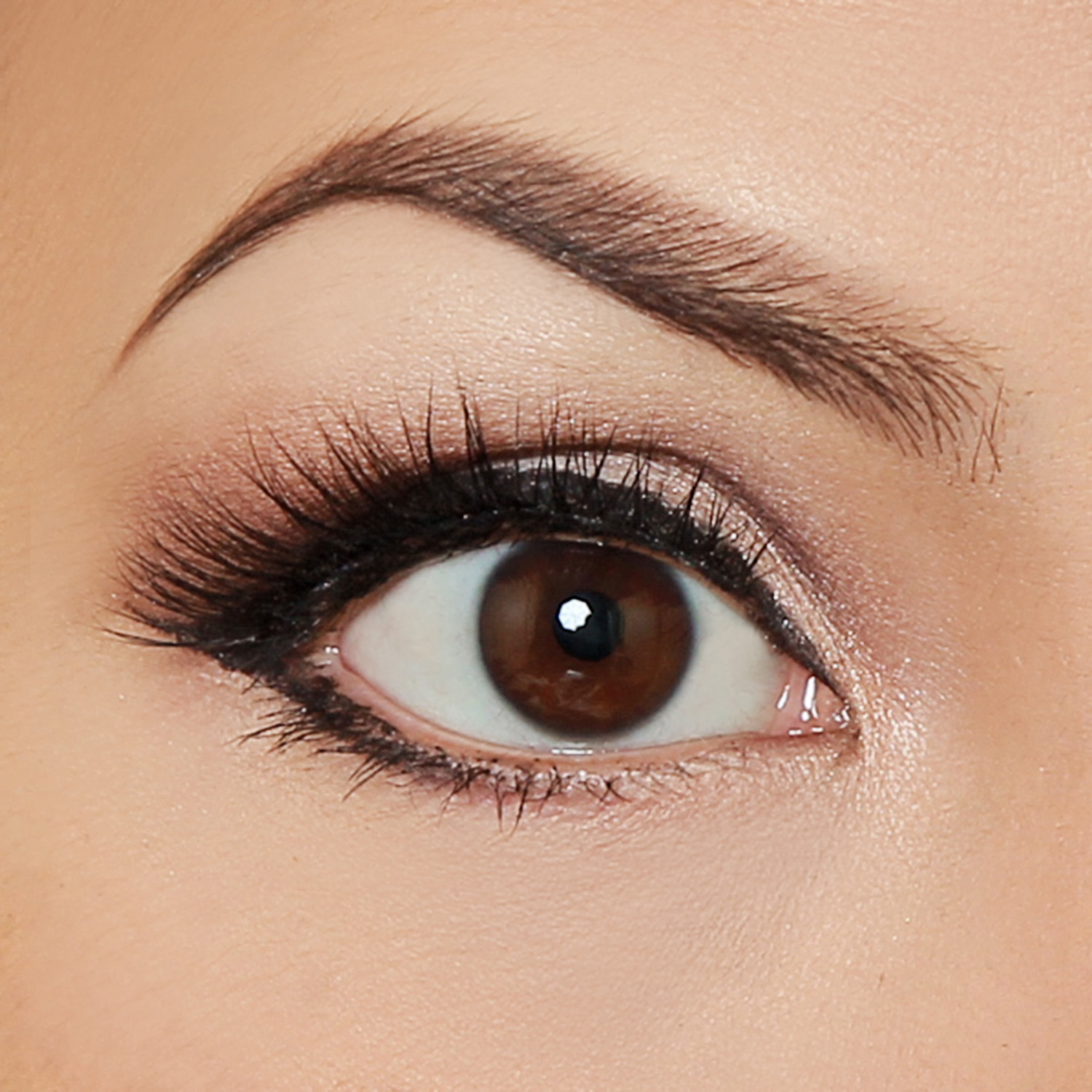 How To Create A Classic Glamour Eye Makeup Pictorial Thoughts From