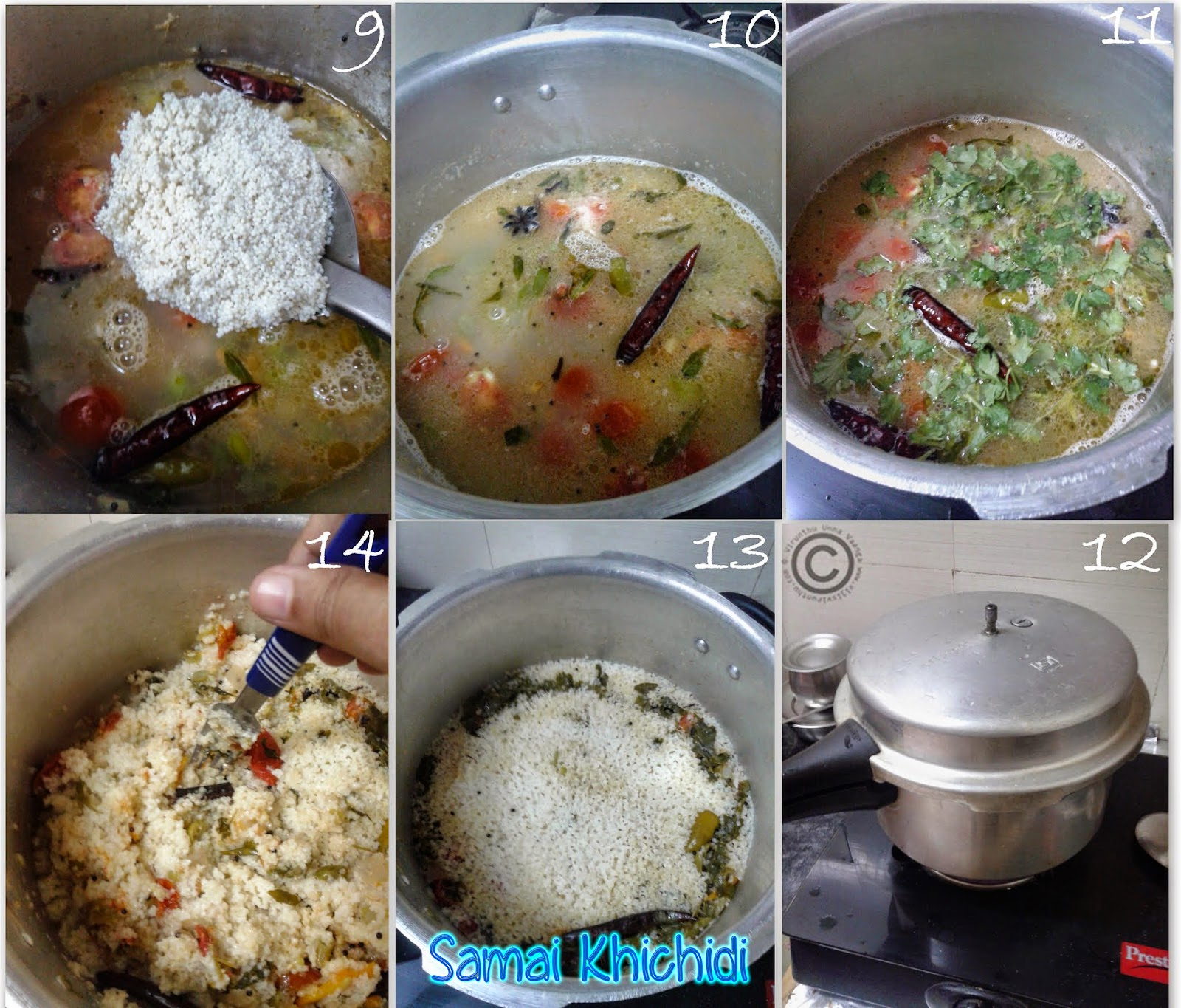 little-millet-vegetable-biryani-recipe