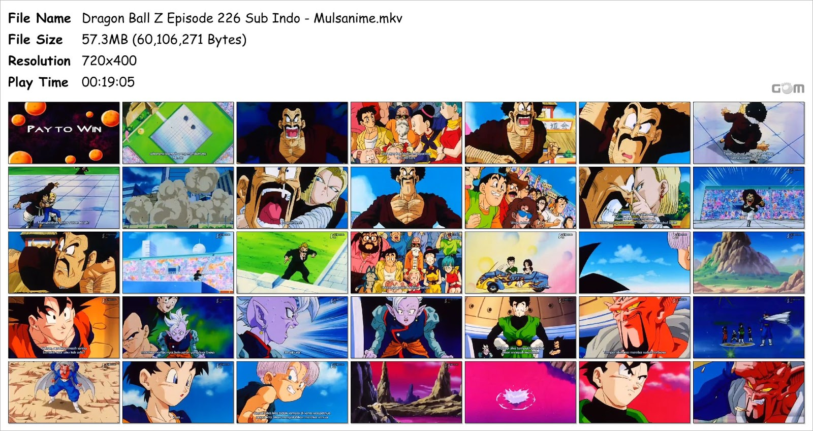 dragon ball z episode 226
