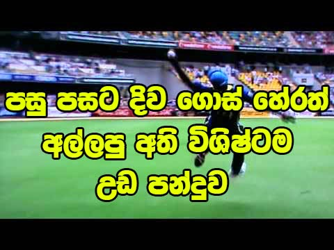 amazing live cricket match