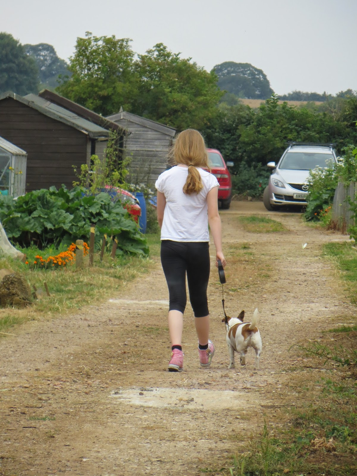 visitors were free to take a stroll and look round the allotments.