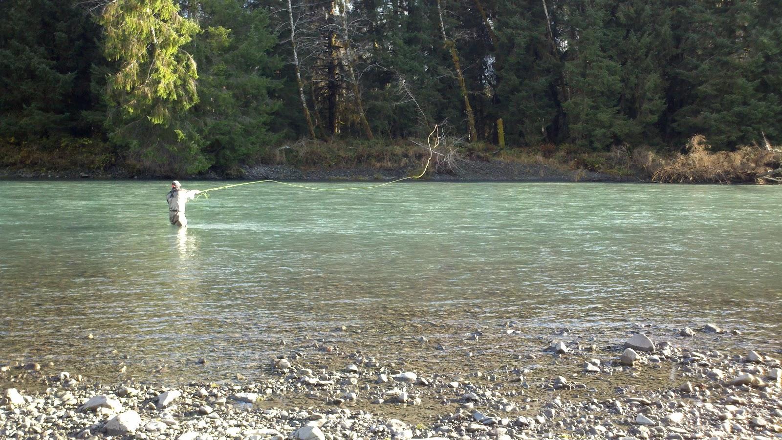 Washington fly fishing a few nice days a little sunshine for Hoh river fishing