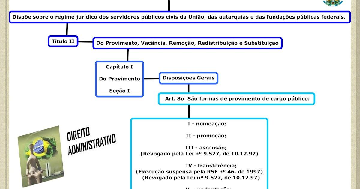 Lei 8112 serv públicos Cap I - Provimento