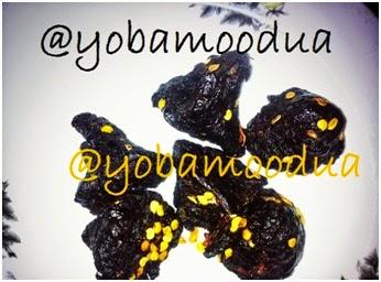 yobamoodua