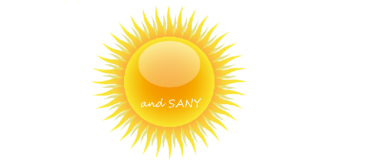 Sun and Sany