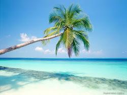 جزيرة السلام