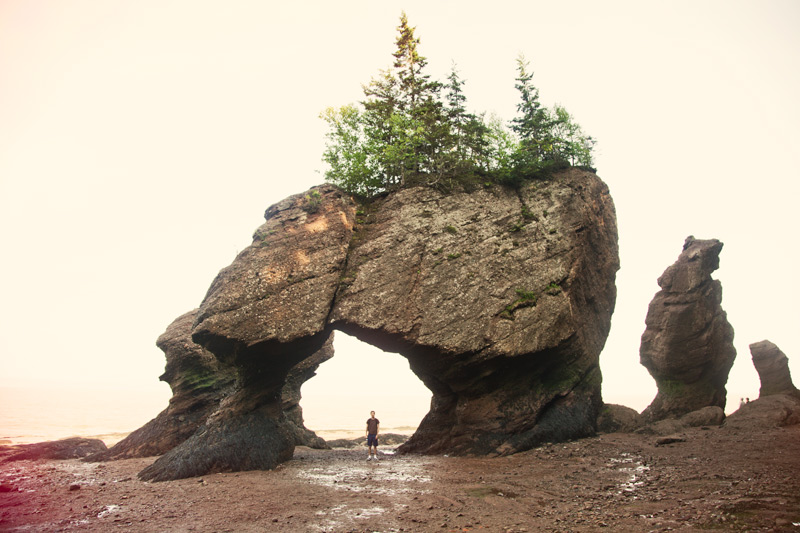 The Hopewell Rocks at the Bay of Fundy at low tide