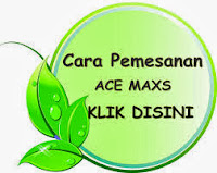 cara order ace maxs