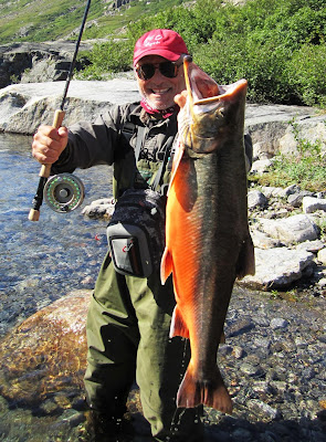 Big fishes of the world arctic char salvelinus alpinus for Largest saltwater fish
