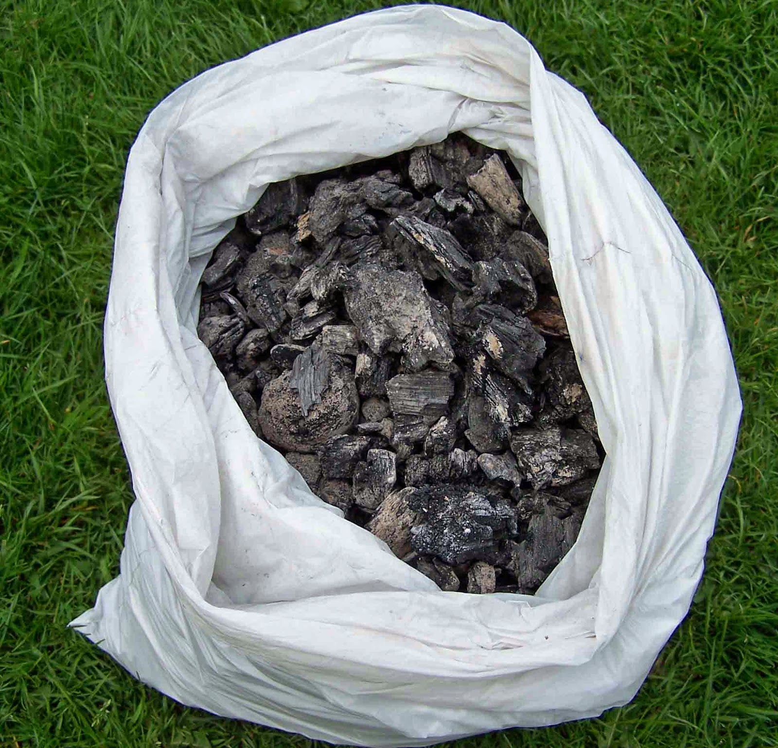 charcoal for biochar