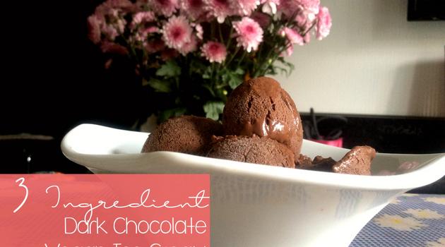 3 Ingredient Dark Chocolate Ice Cream, No Churn needed, (vegan, paleo) from Happy Healthy Holy Home