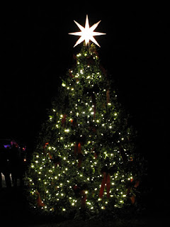 Bowie,Maryland,Christmas Tree Lighting,Belair Mansion,Christmas Tree