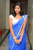 Bindhu latest sizzling saree pics-thumbnail-12