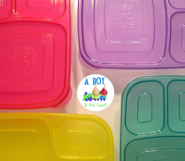 NEW EasyLunchBoxes Brights collection