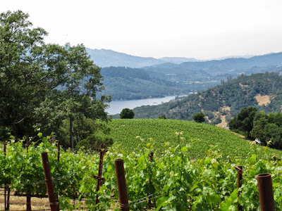 Nepa Valley, Nepa County California