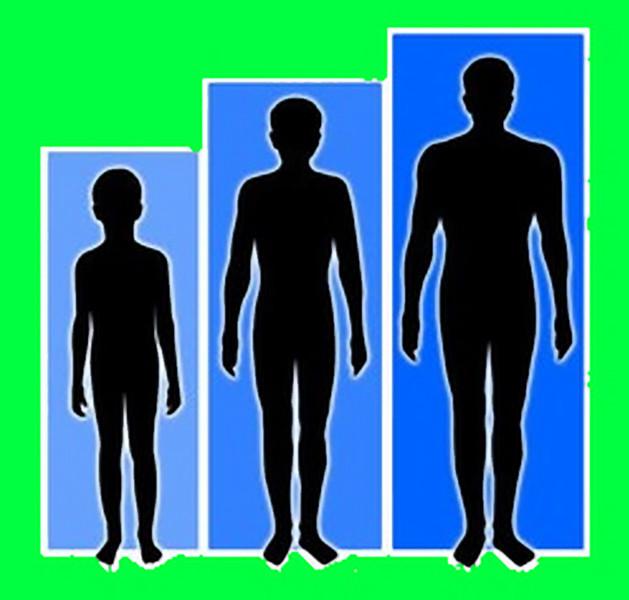 estatura de las personas: