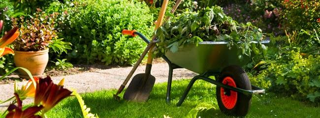 Teix jardiner a mantenimiento de jardines - Mantenimiento de jardines ...