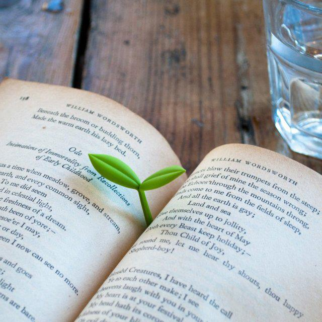 an open book of poetry by William Wordsworth with a green sprout growing from the binding