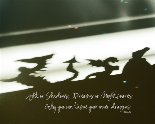 Light or Shadows, Dreams or Nightmares - Only you can tame your inner dragons