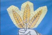 Partidul Poporului-Legea Cojocaru